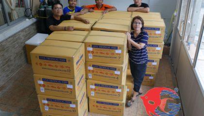 Shipment send freshwater aquarium fish to Morocco